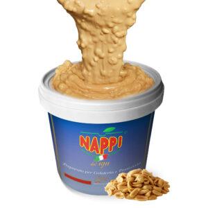 Variegato Arachidi Salate Salted Peanuts Nappi Gelato Pastry Pasticceria